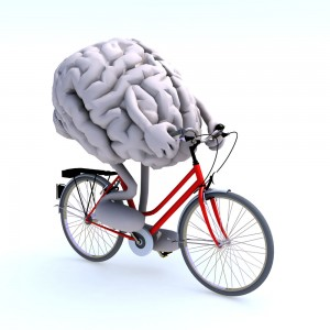 brain shutterstock 113516371 300x300 Training your brain   is it worth the sweat?
